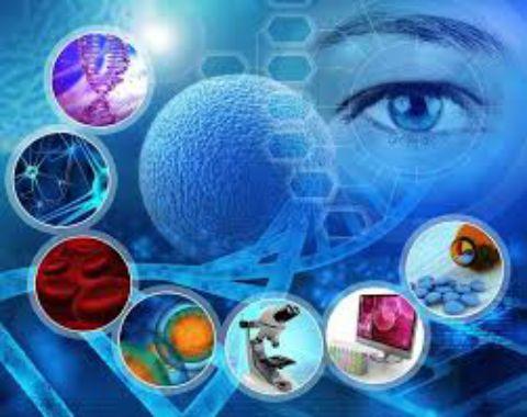 کاربردهای سلول های بنیادی
